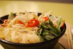 Vietnamese Chicken Pho - Bille Chu, Melbourne Airport AUD11 (avlxyz) Tags: food chicken soup airport vietnamese melbourne yuck vic noodle pho meh tullamarine billychu yuckyuckyuck billiechu