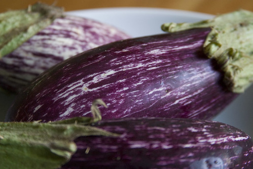 Eggplant (I)