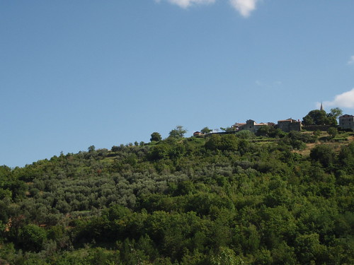 After many years, the olive color is slowly painting the hill below Draguć