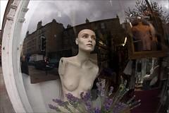 reflections (backroom.angel) Tags: reflection mannequin window shop fisheye