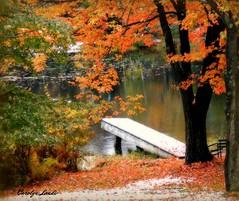 Snowfall in Autumn (socalgal_64) Tags: autumn trees lake snow mountains fall nature water dock woods natural pennsylvania pa poconos snowfall topseven