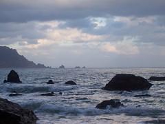 Ruta das Algas por ossendeiros