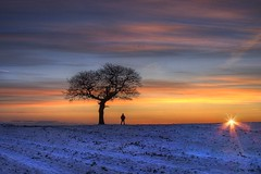 Revolutionary World (Canonshot Mole) Tags: world winter sky sun snow tree silhouette clouds sunrise landscape dawn interestingness earth yorkshire freezing explore top100 frontpage top50 top500