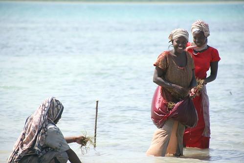 Ng'ambwe 3 women