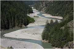 ganges, beyond uttarkashi (nevil zaveri) Tags: uk trees india tree water pine river landscape photography blog photographer photos religion stock images course holy photographs photograph riverbed rivers uttaranchal himalaya zaveri ganga ua stockimages ganges travelogue conifer nevil uttarkashi bhagirathi harshil uttarkhand nevilzaveri