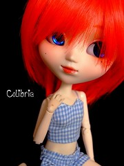 Colibrie (Zoo*) Tags: blue red doll pullip custom custo coolcat kirsche colibrie obitsu25cm