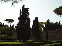FILE0043 (avinashkunnath) Tags: rome baths caracalla