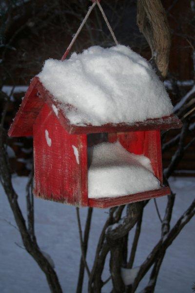 Snowbirdy Feeder