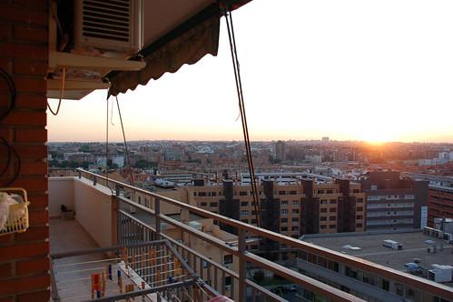 Madrid y paloma