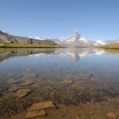 offspring @ stellisee switzerland (Toni_V) Tags: lake fish alps water reflections schweiz switzerland suisse hiking zermatt matterhorn alpen wallis valais cervin randonnée fische d300 cervino stellisee toniv dsc1066 theperfectphotographer 090813