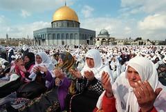 50             (  ) Tags: hijab 50                             2032007          flowersofislam