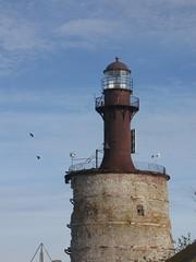 ei aina lokkeja (vaula) Tags: sea lighthouse island balticsea keri raven 2009 meri syksy saari majakka korppi tuletorn kerisaar