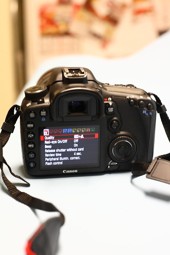 rear of 7D with high res screen