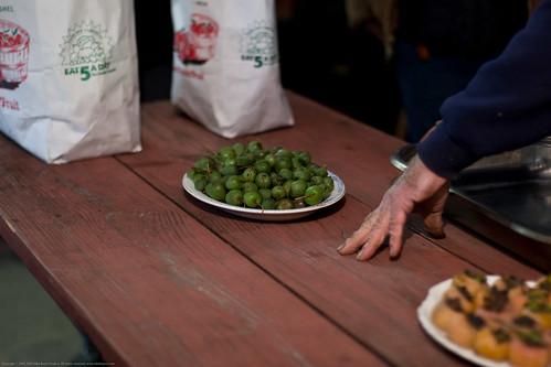 Edible Forest Gardens: hardy kiwis