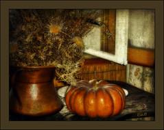 Cinderella's pumpkin (in eva vae) Tags: windows stilllife orange texture silver pumpkin tricot warm shadows copper cinderella thistles rame cardi naturamorta abigfave anawesomeshot saariysqualitypictures sailsevenseas inevavae magiayfotografia thelittlebookoftreasures