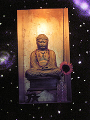 Buddha Floating in Outer Space (Walker Dukes) Tags: sanfrancisco california red flower colour glass stars gold solar necklace shrine purple magenta systems jewelry altar galaxy vase cosmic daisey godliness godhood