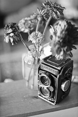 Rolleiflex (patrickjoust) Tags: bw usa white black flower slr tlr blancoynegro film home glass analog america tomato lens ed screw us reflex md nikon focus mechanical asahi pentax takumar kodak tmax scanner sauce united 28mm trix patrick twin maryland baltimore scan shelf container mount negative v f single 400 m42 spotmatic 28 universal states manual 80 joust smc developed f28 premium biancoenero planar develop estados 80mm f35 screwmount blancetnoir unidos arista rebranded schwarzundweiss autaut rebadged patrickjoust