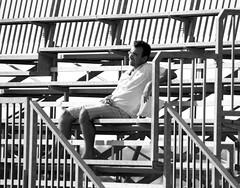 sfinito (enricoerriko) Tags: world china door nyc red sea italy horse sun paris france green love beach yellow italia blu corse harley comunicazione made giallo posters porta land terra gaia rosso colori cavalli stile mori plakate italie marche paesaggio vita grafica bua enrico capitano tipo angeli lemarche sulky fantino futurismo manifesti libera demoni bl razionalismo marcheregione regionemarche sportman ippodromo civitanovamarche trotto portocivitanova guidatore caratteri ribelli pannaggi cartacanta osvaldolicini citan licini montevidoncorrado rodcenko erriko enricoerriko