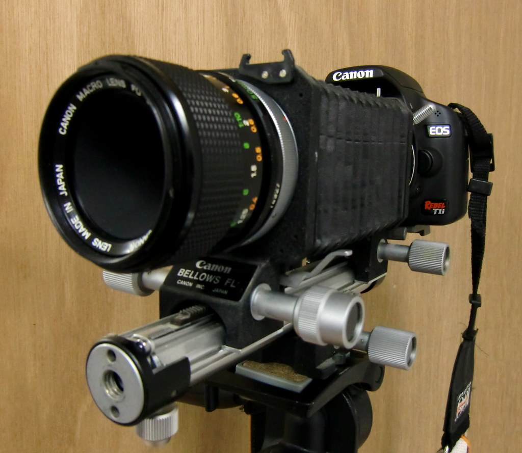 FD lenses on a DSLR -- Canon EOS Digital Cameras in photography