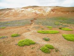 Namafjall - Krafla (Masmau) Tags: volcano iceland fields geothermal myvatn islanda krafla namafjall volcaniclake