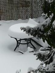 Wintergarten6