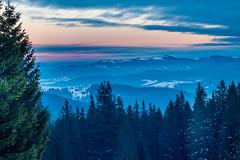 The Dusk on Dragobrat (Wolfhowl) Tags: carpathians sun 2017 landscape ukraine dusk драгобрат україна snow mountains carpathianmountains карпати winter dragobrat