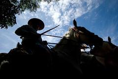 Saca de Yeguas (pinochopirates) Tags: horses silhouette almonte doana sigma1020mm sacadeyeguas
