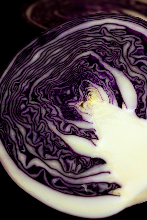 red cabbage© by Haalo