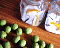 Orahovac (Walnut Liqueur) Step 1 (ulterior epicure) Tags: drink walnut sugar liquor alcohol vodka vanilla libation greenwalnut