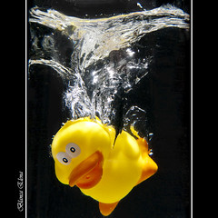 Splash Jugando con agua (Leona Blanca) Tags: water yellow duck agua bubbles amarillo pato splash burbujas