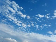 【写真】梅雨明けの青空