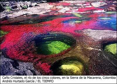 Caño Cristales, La Macarena