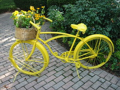 Yellow Bike ~ Sits Outside The Paper Merchant, Geneva, Illinois (Angie Naron) Tags: bike bicycle yellowbike bicyclebasketwithflowers genevaillinois wonderfulworld yellowbicycle schwinnbicycle thepapermerchant photobyangienaron