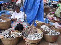 Vendor at Margao Fish Market (AaronC's Photos) Tags: street india fish women basket market goa stall trading vendor variety bazaar trade selling slums buying vendors margao marmugao