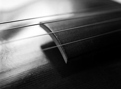 Violin (Steve Snodgrass) Tags: wood bw music white black mamiya film monochrome jay performance replica violin string practice hip baroque ebony fingerboard authentic informed haide historically m645 developedandscannedbyangelakleis