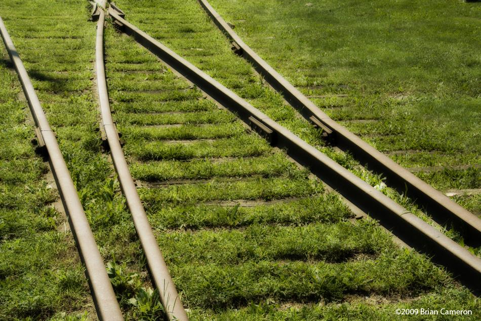 Grass Tracks