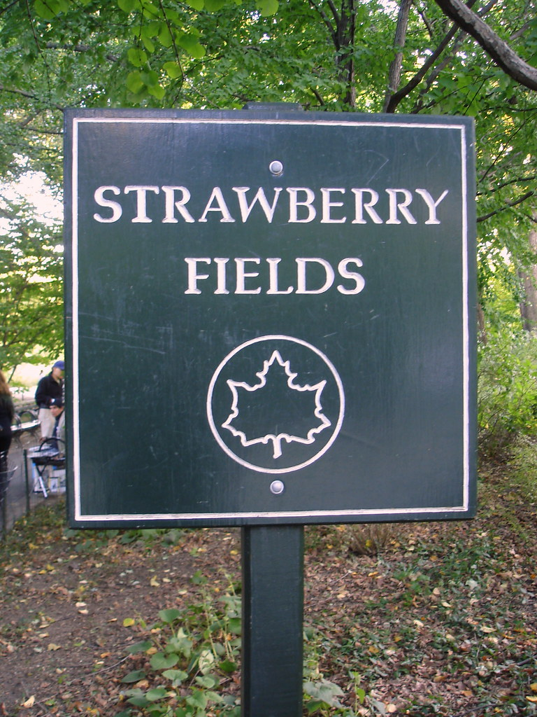 Strawberry Fields 01