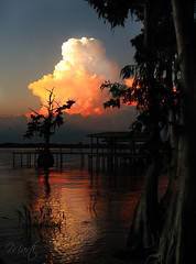 Fall Color Change in Florida (FLPhotonut) Tags: sunset cloud lake reflection tree water dock colorful florida cypress sihlouette canonpowershot digitalcameraclub flphotonut