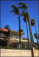 Autour de la baie (stef974run) Tags: ferry bay flag sydney australia cte plage phare australie baie lifesaving ocan littoral pacifique smaphore naturiste bommert nudiste