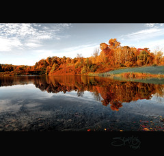 indigo lake (S Alex Maier) Tags: life park autumn ohio lake color reflection fall water glass beauty cat reflections watercolor season photography mirror pond bravo peace seasons natural live tail steve indigo peaceful calm falls tokina national valley lance serenity transparency cuyahoga watercolour serene transparent peninsula armstrong lancearmstrong livestrong glassy d300 maier cvnp tranparency 111628 abigfave 1116mm thechallengefactory magicunicornverybest selectbestexcellence magicunicornmasterpiece newgoldenseal sbfmasterpiece