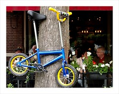 Put up your bicycle . (Franc Le Blanc .) Tags: tree strange bicycle candid streetphoto oisterwijk putup delind