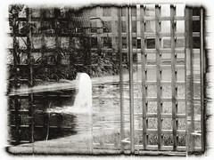 35/365 - 11/1/09 (vpickering) Tags: sculpture fountain glass reflections garden 50mm outdoor 365 graham hirshhorn bunshaft wate gordonbunshaft dangraham 36550 365projectr