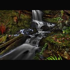 """CLYDACH GORGE WATERFALL "" (Wiffsmiff23) Tags: leaves vines hawthorn trafficcone patiotable patioset clydachgorge waterfll"
