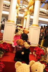 IMG_1244 (fung1981) Tags: bear hongkong doll   kowloonbay toybear