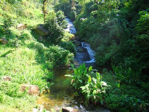 Viaje a la cascada El manto de la llorona (28)
