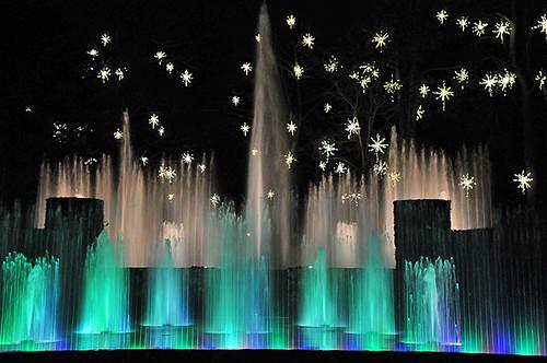 Longwood Christmas 2008 -12