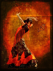 flamenco butterfly (katmary) Tags: red orange texture butterfly spain dancer textures spanish flamenco ghostbones mikebaird 1d110 joessistah flickrvault