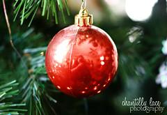 Ornamental Reflection (Chantelle McMillan) Tags: christmas red reflection tree holidays ornament 2009