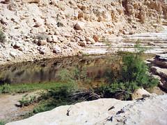 20120520_150203 (missionari.verbiti) Tags: verbiti amiciverbiti terrasanta turismo israele neghev marmorto qumran gerusalemme betlemme gerico nazareth tabor cafarnao hermon cesarea