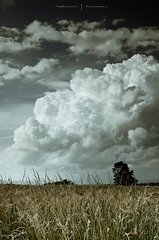 My super Sayan Cloud (Lotfi Dakhli (TheDigitalFly)) Tags: summer cloud storm nikon nuage 2009 orage auvergne ete d300 hauteloire thedigitalfly lotfidakhli 35mmf18g lyontotalrecalldefi2009